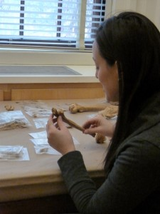 Graduate laboratory assistant collecting data from human skeletal remains from the Elkins Site